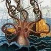 Kraken_color_185