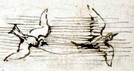 Dibujo del Códice sobre el vuelo de los pájaros